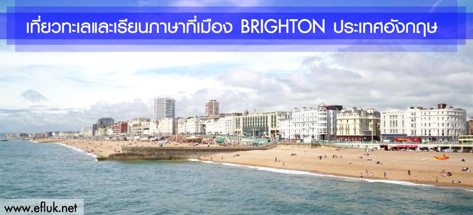 Brighton Cover