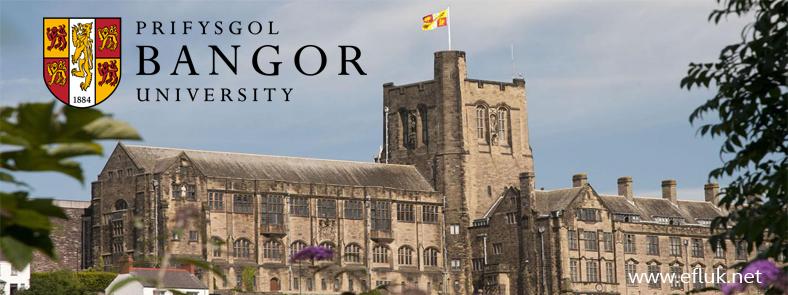 Bangor Banner