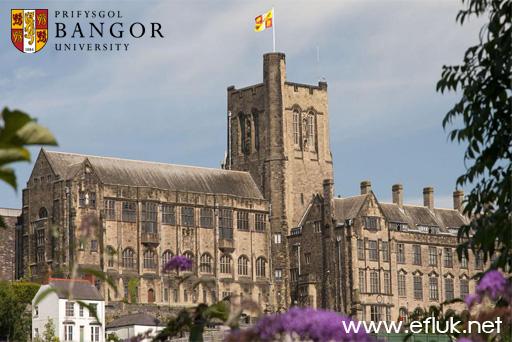 Bangor 3